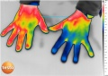 Hands-thermography-medical-TESTO-890.jpg
